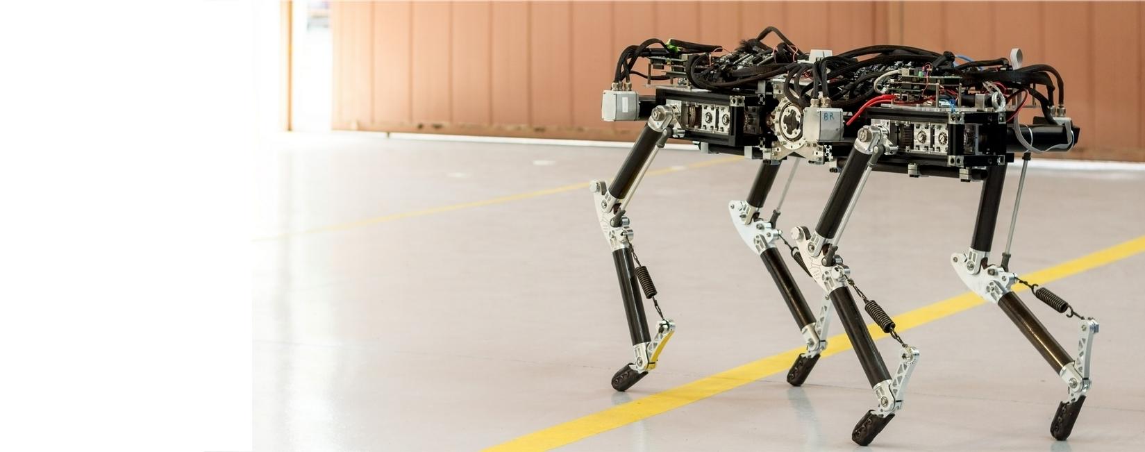 Laelaps II Robot